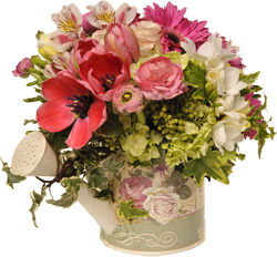 Florals by Celebrate 259-8611